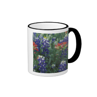 USA Texas Hill Country Bluebonnets and Coffee Mugs