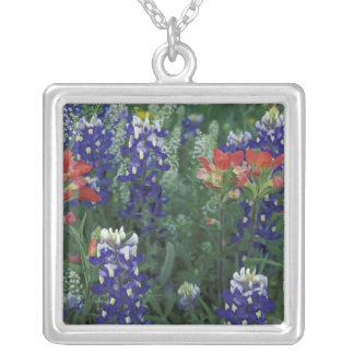 USA, Texas Hill Country. Bluebonnets and Silver Plated Necklace
