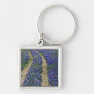 USA, Texas, near Marble Falls, Tracks in blue Silver-Colored Square Key Ring