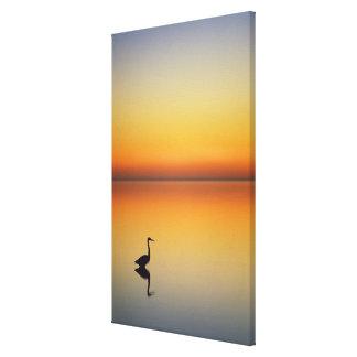 USA, Texas, Port Aransas, Great Blue Heron at Canvas Print