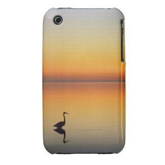 USA, Texas, Port Aransas, Great Blue Heron at iPhone 3 Cases