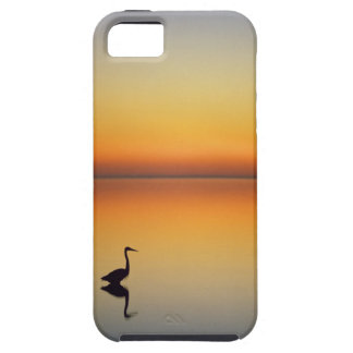 USA, Texas, Port Aransas, Great Blue Heron at iPhone 5 Cover