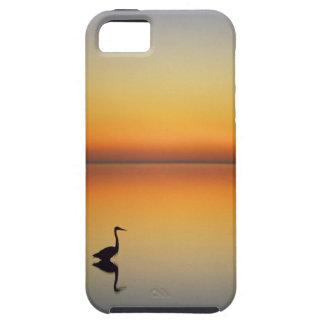 USA, Texas, Port Aransas, Great Blue Heron at iPhone 5 Cover