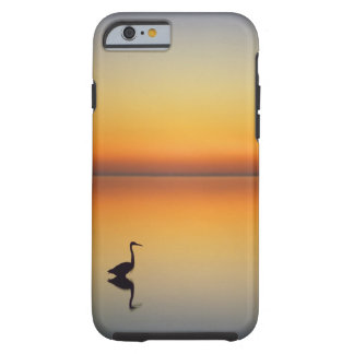 USA, Texas, Port Aransas, Great Blue Heron at Tough iPhone 6 Case
