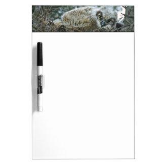 USA, Texas, Rio Grande Valley, McAllen. Close-up Dry Erase Board