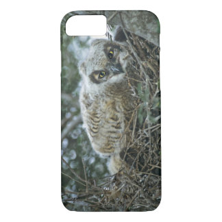 USA, Texas, Rio Grande Valley, McAllen. Close-up iPhone 8/7 Case