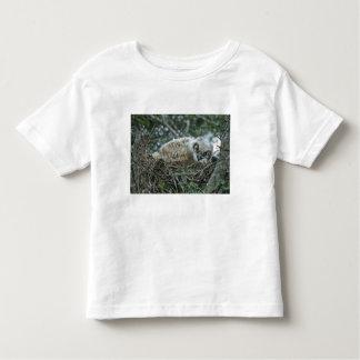 USA, Texas, Rio Grande Valley, McAllen. Close-up T-shirts