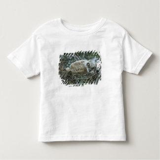 USA, Texas, Rio Grande Valley, McAllen. Close-up Toddler T-Shirt