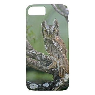 USA, Texas, Rio Grande Valley, McAllen. Eastern iPhone 8/7 Case