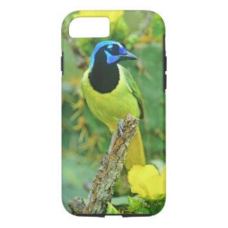 USA, Texas, Rio Grande Valley, McAllen. Green iPhone 8/7 Case
