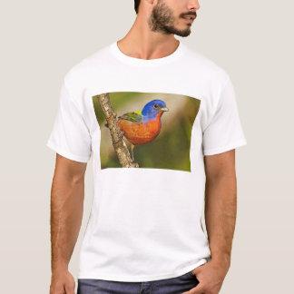 USA, Texas, Rio Grande Valley, McAllen. Male 2 T-Shirt