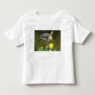 USA, Texas, Rio Grande Valley, McAllen. Male Toddler T-Shirt