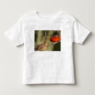 USA, Texas, Rio Grande Valley, McAllen. Mated Toddler T-Shirt