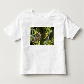 USA, Texas, Rio Grande Valley, McAllen. Toddler T-Shirt