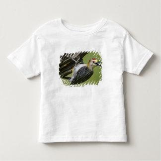 USA, Texas, Rio Grande Valley, McAllen. Wild, Toddler T-Shirt