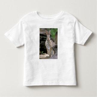 USA, Texas, Rio Grande Valley. Wild desert Toddler T-Shirt