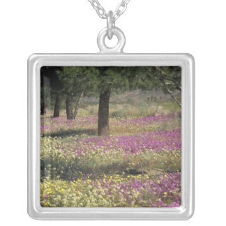 USA, Texas, Sand Verbena and Brown-eyed Silver Plated Necklace