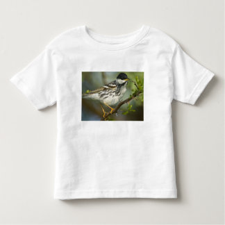 USA, Texas, South Padre Island. Portrait of 4 Toddler T-Shirt