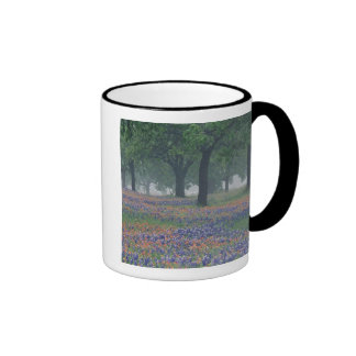 USA Texas Texas Hill Country Expansive field Mugs