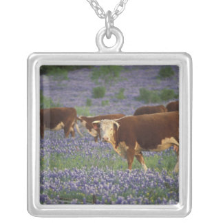 USA, Texas, Texas Hill Country, Hereford Silver Plated Necklace
