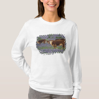 USA, Texas, Texas Hill Country, Hereford T-Shirt