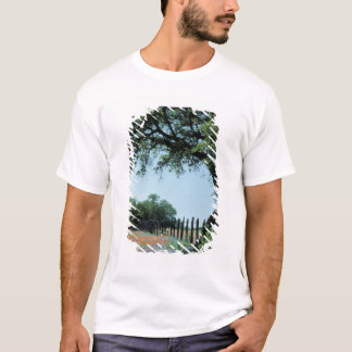 USA, Texas, Texas Hill Country Paintbrush and T-Shirt