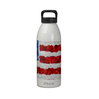 USA Today Drinking Bottle
