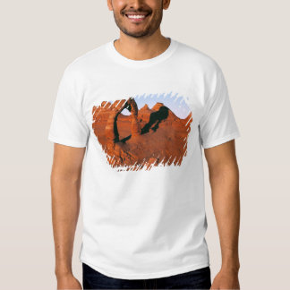 USA, Utah, Arches NP. Delicate Arch is one of T Shirts