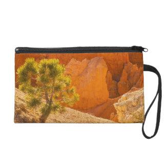 USA, Utah, Bryce Canyon National Park Wristlet Purse