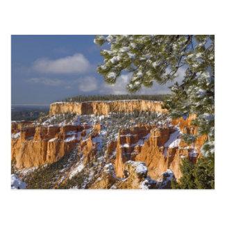 USA, Utah, Bryce Canyon National Park. Sunrise Postcard