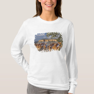 USA, Utah, Bryce Canyon National Park. Sunrise T-Shirt