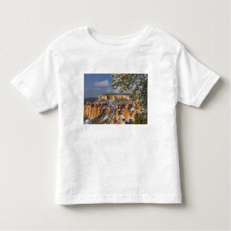 USA, Utah, Bryce Canyon National Park. Sunrise Toddler T-Shirt