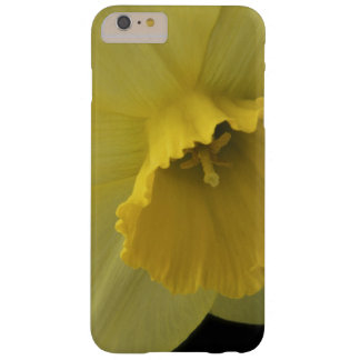 USA, Utah, Cache Valley Daffodils Barely There iPhone 6 Plus Case