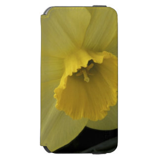 USA, Utah, Cache Valley Daffodils Incipio Watson™ iPhone 6 Wallet Case