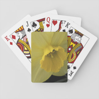 USA, Utah, Cache Valley Daffodils Playing Cards