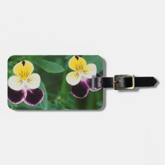 USA, Utah, Cache Valley, Johnny Jump Up Luggage Tag
