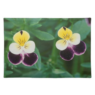 USA, Utah, Cache Valley, Johnny Jump Up Placemat