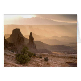 USA; Utah; Canyonlands National Park. View of Card
