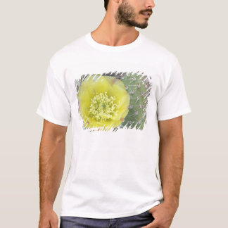 USA, Utah, Canyonlands, NP, Desert Prickly Pear T-Shirt