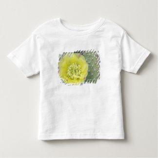 USA, Utah, Canyonlands, NP, Desert Prickly Pear Tshirts