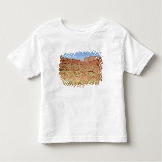 USA, Utah, Canyonlands NP, Shafer Canyon Toddler T-Shirt