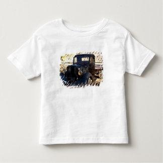 USA, Utah, Capitol Reef National Park, Scenic Toddler T-Shirt