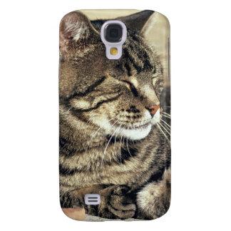 USA, Utah, Capitol Reef NP. Sleeping tabby cat Galaxy S4 Case