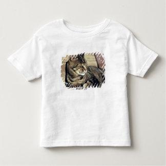 USA, Utah, Capitol Reef NP. Sleeping tabby cat Toddler T-Shirt