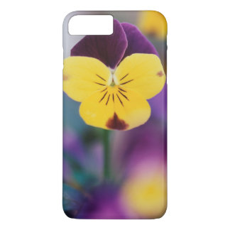 USA, Utah, Close-Up of Viola tricolor in garden iPhone 8 Plus/7 Plus Case