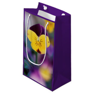 USA, Utah, Close-Up of Viola tricolor in garden Small Gift Bag