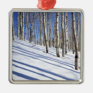 USA, Utah, Dixie National Forest, Aspen Grove Christmas Ornament