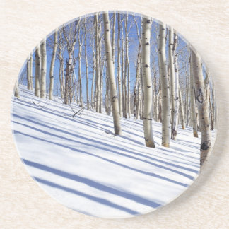 USA, Utah, Dixie National Forest, Aspen Grove Coaster
