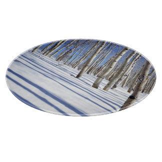USA, Utah, Dixie National Forest, Aspen Grove Cutting Board
