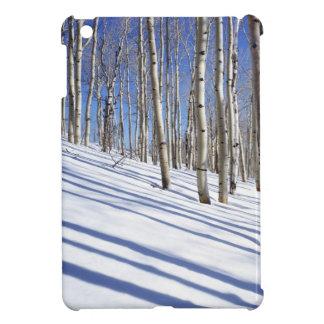 USA, Utah, Dixie National Forest, Aspen Grove iPad Mini Cases